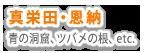 沖縄ファンダイビング 真栄田・恩納エリア