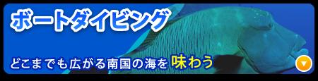 沖縄ボートダイビング