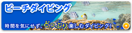 沖縄ビーチダイビング
