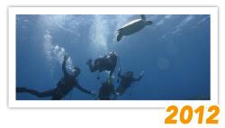 沖縄ダイビングギャラリー ツアー写真 2012