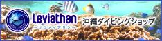 沖縄ダイビング リヴァイアサン